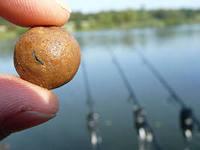Бойлы своими руками — лучшая приманка для успешной рыбалки.