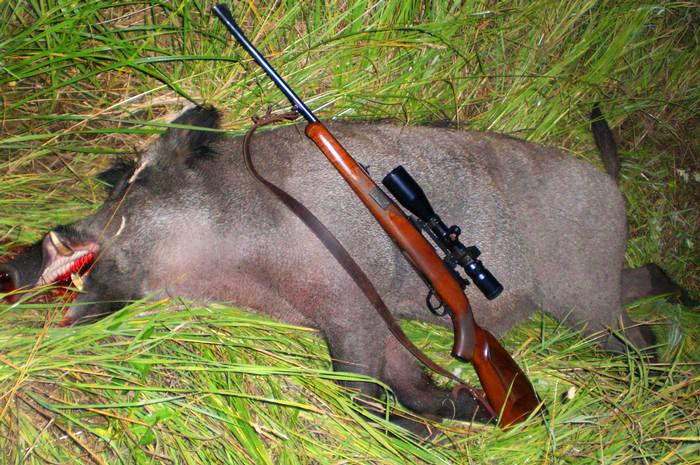 Особенности сигнального револьвера МР-313