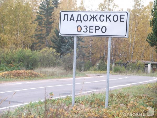 Разновидность рыб Ладожского озера.