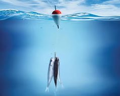 Правила любой рыбалки