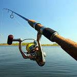 Как ловить щуку на спиннинг в прудах и речках