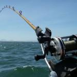 Рекомендации по подбору джиг-грузила для троллинга и рыбалки