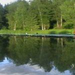 Куда поехать на рыбалку в Подмосковье? Часть 2