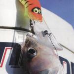 Рыбалка в Карелии что брать с собой