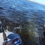 Выбор и правильный подбор лодки для троллинга в СПб